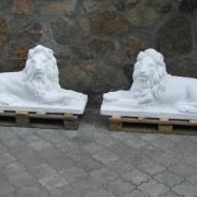 Фото фигуры льва для памятника. Размеры скульптуры льва: высота скульптуры льва 72 см., длина фигуры льва 130 см., вес скульптуры льва 310 кг. Доступная цена скульптуры льва 21 тыс. грн. Купить скульптуру льва, можно в магазине скульптуры по ул. Стеценко, 18, в Киеве.