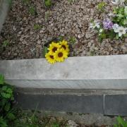 Реставрация цоколей, цветников
