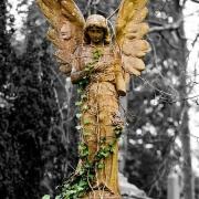 Реставрация ангелов на кладбищах Украины. Фото статуи на кладбище. Стоимость реставрации фигуры из мрамора - доступная.
